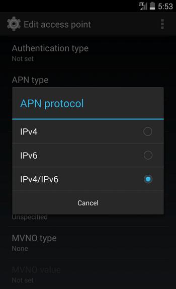 Опция IPv4/IPv6