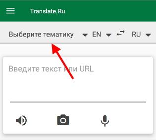 Тематика перевода
