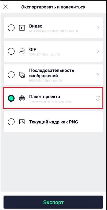 "Опция ""Пакет проекта"""