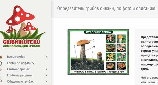 Gribnikoff.ru