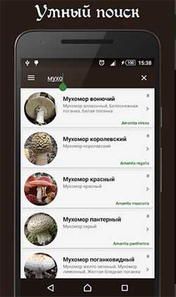 Справочник грибов