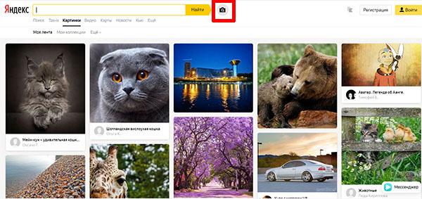 Кнопка с фотоаппаратом в Яндексе Картинки