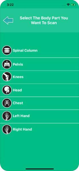 Список частей тела