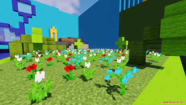 Снимок вида на цветочное поле