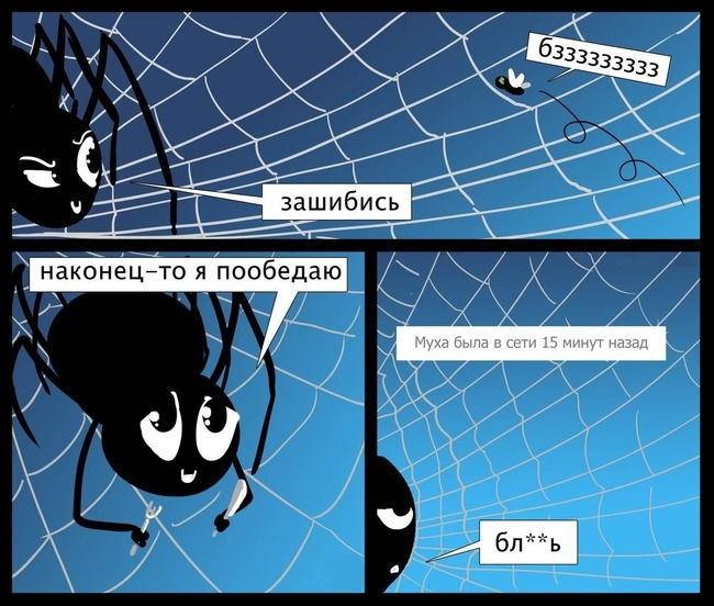Комикс на 3 фрейма про паука и муху