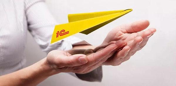 1С, самолётик
